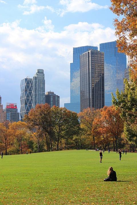 Central Park New York Manhattan · Free Photo On Pixabay
