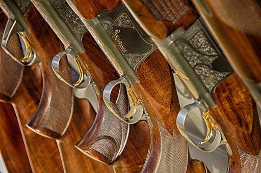 60 Free Shotgun Hunting Images Pixabay