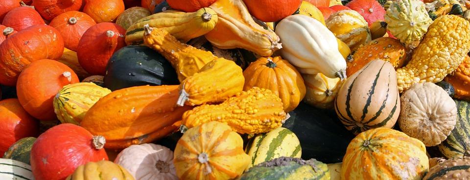 Citaten Herfst Gratis : Gratis foto pompoenen herfst oktober oogst