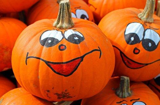 Pumpkins, Hokkaido, Autumn, October