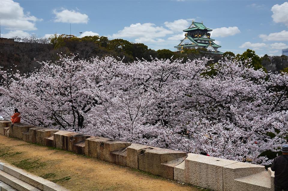 Free Photo Osaka Osaka Castle Castle Free Image On