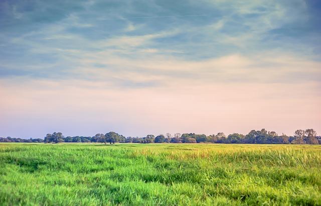 Landscape Meadow Grass 183 Free Photo On Pixabay