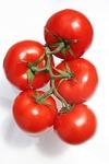 pomidor, kilka, starsze