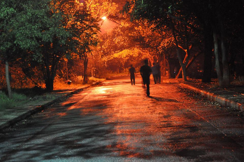 Lost, Hell, Limbo, Night, Dark, Forest, Alone, Lamp