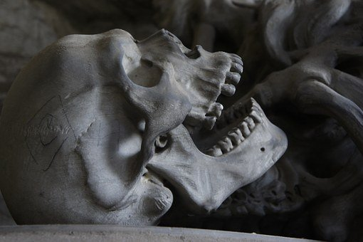 Skull, Cemetery, Genoa, Teeth, Bone, Die