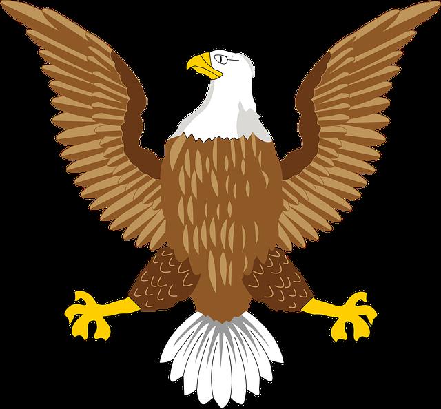 Bald Eagle National Free Vector Graphic On Pixabay