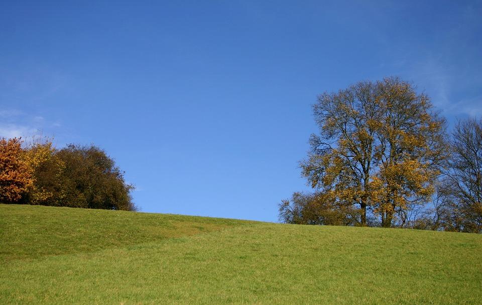 bukit pemandangan alam pohon musim gugur