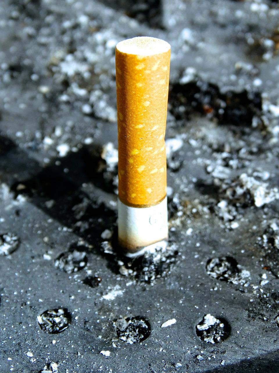 the end of smoking Taking up smoking at the end of the world in his late twenties, john sherman finds a new fondness for cigarettes, despite everything he was ever taught about them.