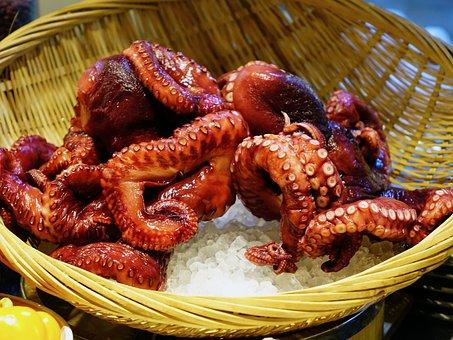 タコ, 魚介類, 海, 触手, 生, 冷, 水中, レストラン, タコ, タコ