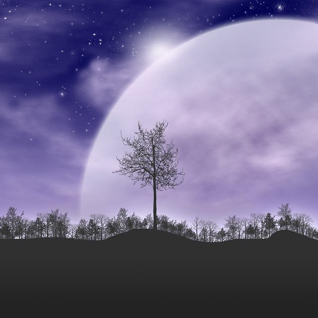 trees starry sky silhouette  u00b7 free image on pixabay