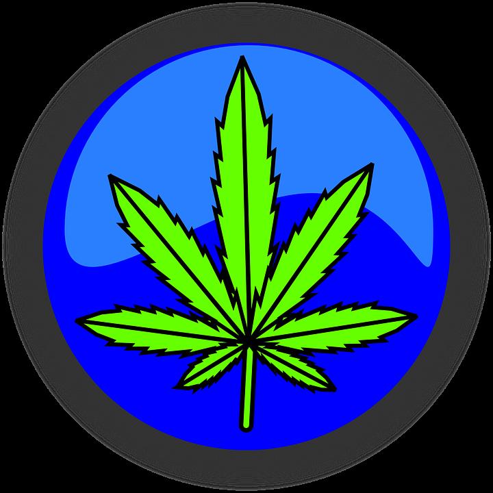Cannabis Marijuana Leaf Free Vector Graphic On Pixabay