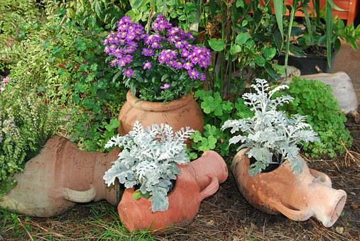 Anfore Con Fiori.100 Vasi Di Terracotta E Terracotta Immagini Gratis Pixabay
