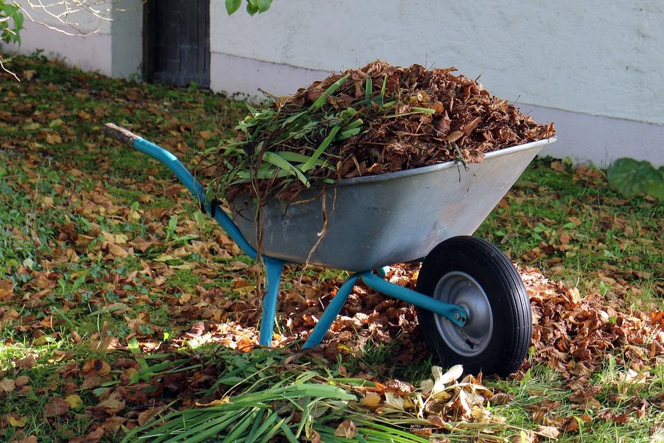Autumn Wheelbarrows Garden Free photo on Pixabay