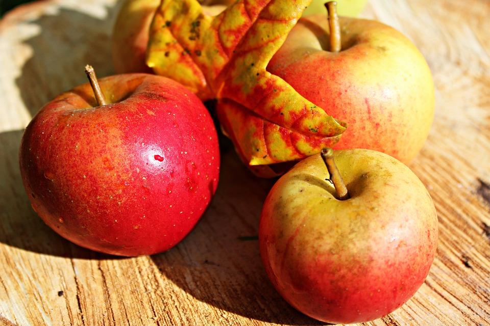 Free Photo Apple Ripe Red Autumn Fruits Free Image