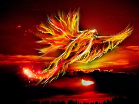 Phoenix, Bird, Fire, Sun, Bright Red