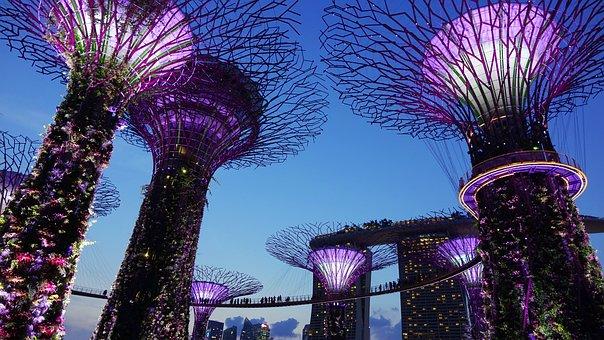 Jardín Junto A La Bahía, Singapur, Noche