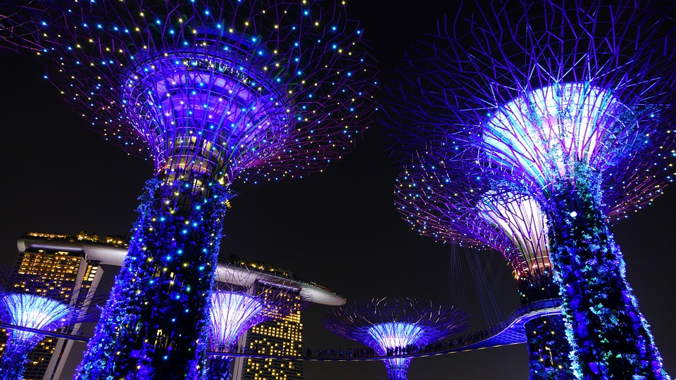 Garden By The Bay Night free photo: gardenthe bay, singapore, night - free image on
