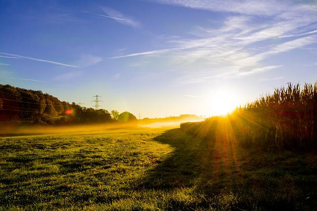 Meadow Sunrise Morning Mist  Free photo on Pixabay