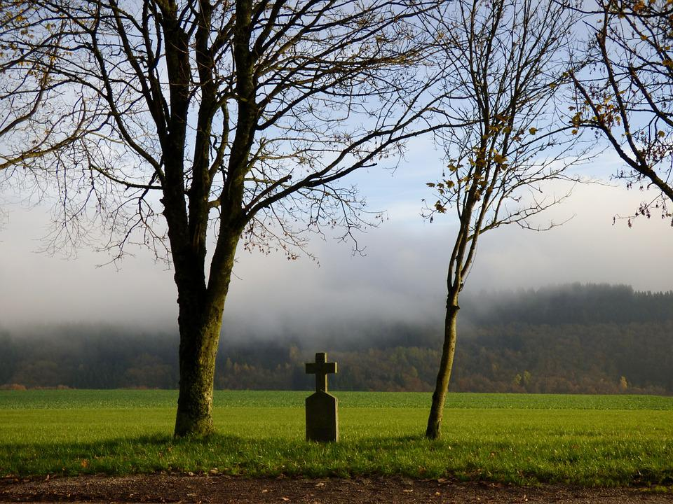 Field Cross, Fog, Trees, Landscape
