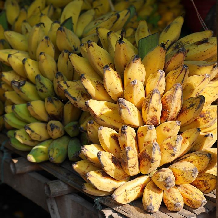 Bananen, Bananenstaude, Früchte, Gelb