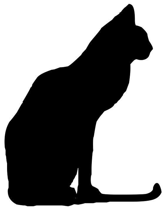 Gato, Animales, Silueta