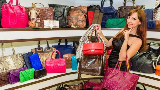 9c9b4dbecd106 Handbags Shopping Woman - Free photo on Pixabay