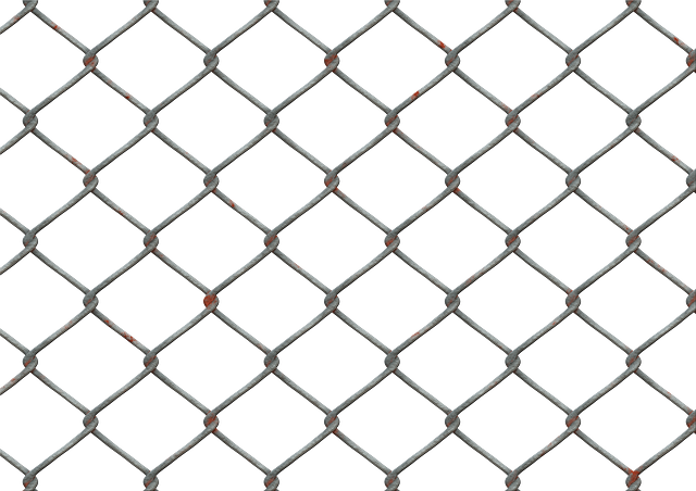 Wire Mesh Fence · Free image on Pixabay