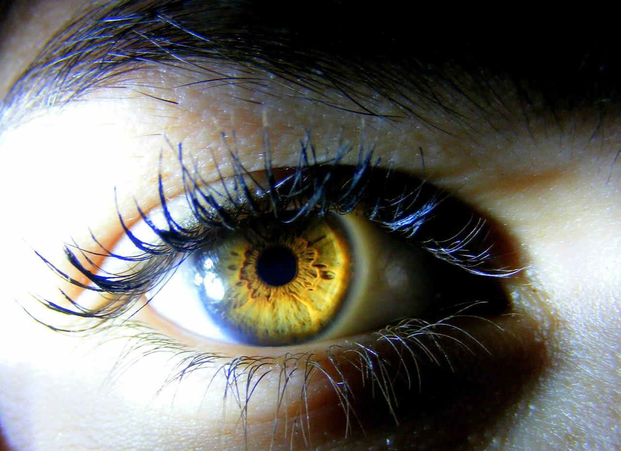 Картинки желтыми глазами