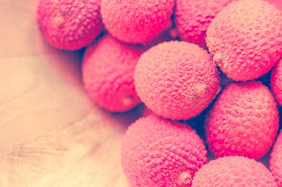 Soft Cat Food >> Free photo: Lychee, Fruits, Sweet, Pink, Red - Free Image on Pixabay - 510474