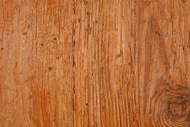 Free photo: Wood, Structure, Background, Grain - Free Image on Pixabay - 511037
