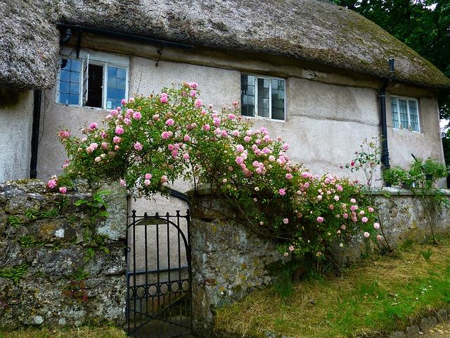 photo gratuite accueil roses rose arc vieux image gratuite sur pixabay 511212. Black Bedroom Furniture Sets. Home Design Ideas