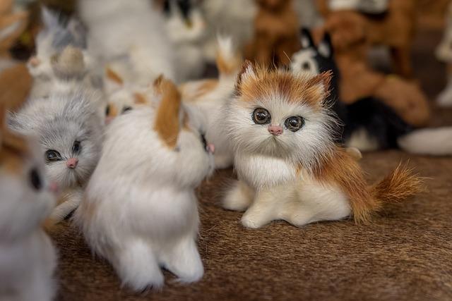 Kucing Anak Mainan 183 Foto Gratis Di Pixabay