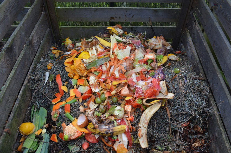 garbage in a compost bin