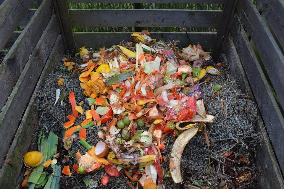 Déchets Verts, Compost, Bac À Compost