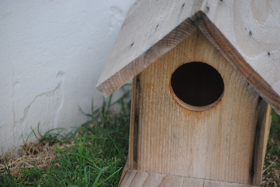 photo gratuite cabane d 39 oiseaux bois maison image gratuite sur pixabay 514023. Black Bedroom Furniture Sets. Home Design Ideas