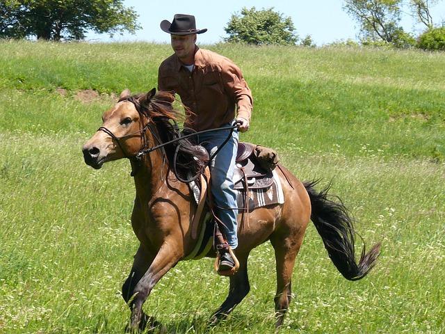 Rodeo Cowboy Rider 183 Free Photo On Pixabay