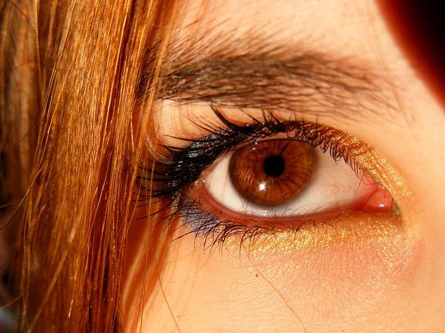 Free Photo Brown Brown Eyes Iris Gene Free Image On