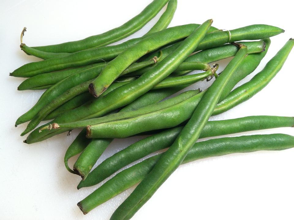 Healthy foods  green beans