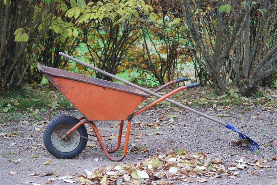 Wheelbarrow, Autumn, Rake, Foliage