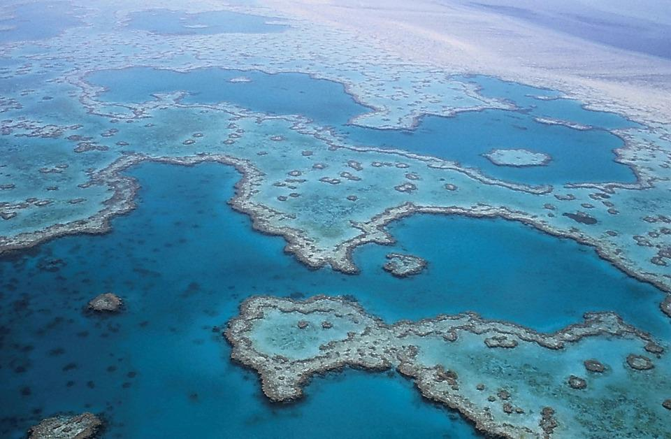 Image for Great Barrier Reef, Australia