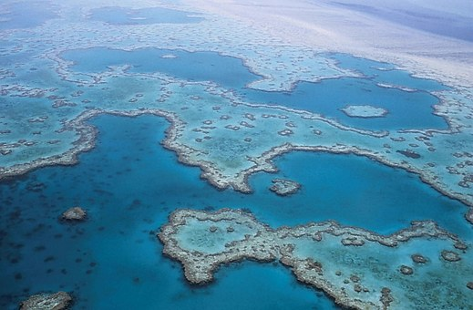 Great Barrier Reef, Coral, Australia