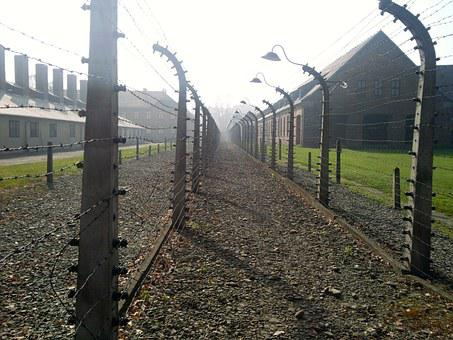 Concentration Camp, Holocaust, Auschwitz