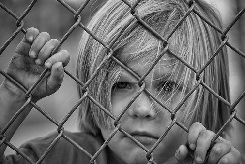 Boy, Looking, Fence, Chain Link, Young