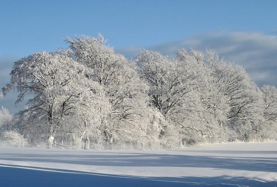 kostenloses foto winter winterlandschaft schnee kostenloses bild auf pixabay 530904. Black Bedroom Furniture Sets. Home Design Ideas