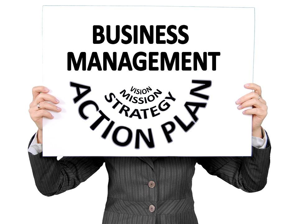 Executive, Businesswoman, Women'S Power, Plan, Action