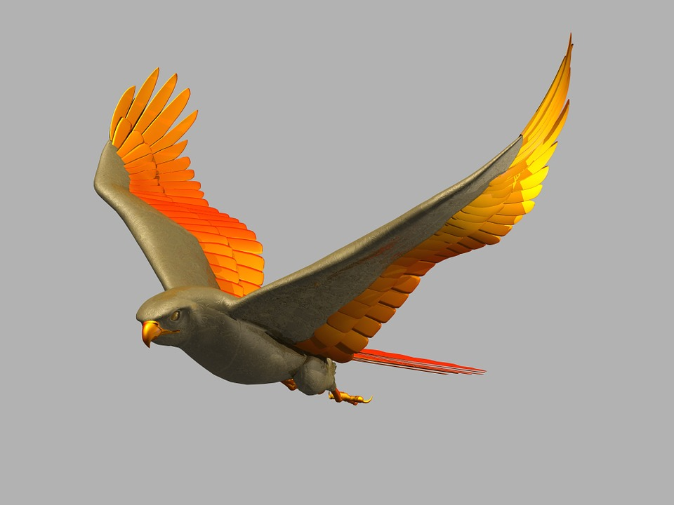 Bird Flying Flight Wings Creative 542484