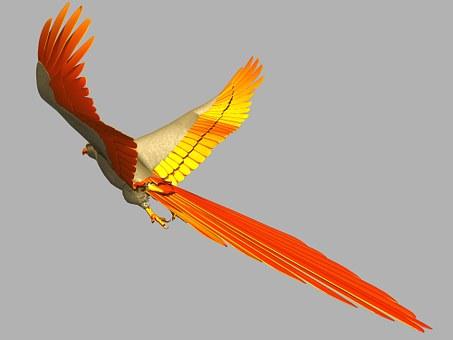Parrot, Bird, Flying, Flight, Wings