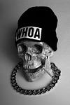 Skull, From InText
