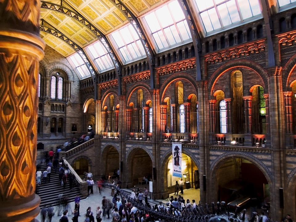 natural history museum london free photo on pixabay