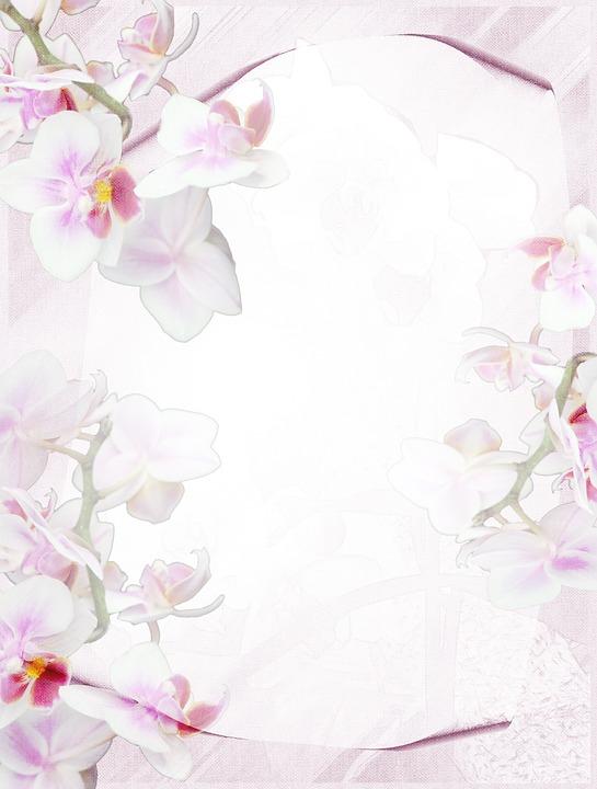 Briefpapier Orchidee Lila · Kostenloses Bild auf Pixabay